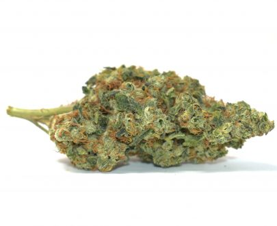candy-apple-pacific-canny