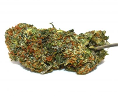 lindsay OG AAAA Pacific Canny Online Dispensary