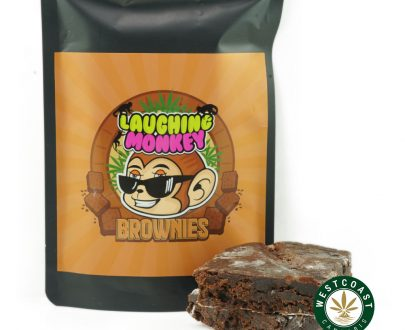laughing monkey chocolate fudge brownies