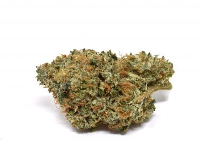 pre 98 bubba pacific canny online weed dispensary