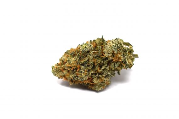 Afgooey Pacific Canny Online weed dispensary